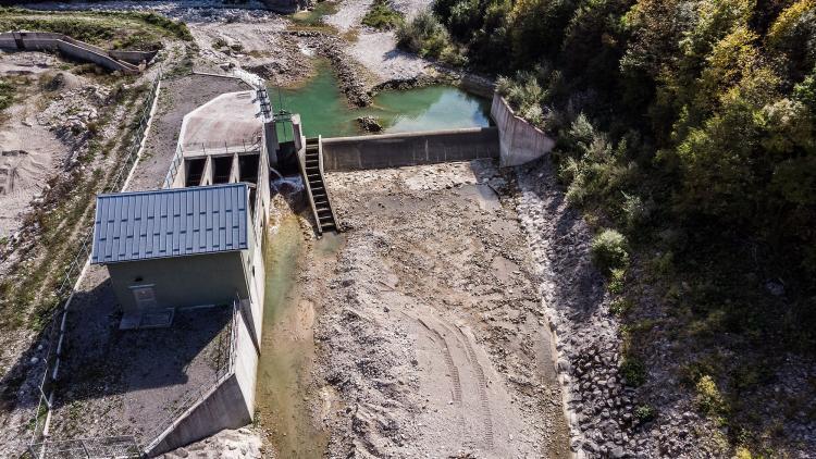 Aufgrund von Wasserkraft und anderen Flussregulierungen sind Süßwasserarten am stärksten bedroht © Amel Emric