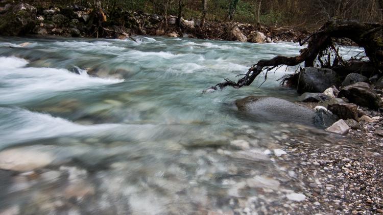 Der Doljanka-Fluss in Bosnien-Herzegowina ist in Gefahr. Bitte unterschreibe die Petition! © Anes Podic