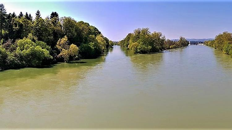 Zusammenfluss der Flüsse Sava und Krka in Slowenien. Der Fluss Sava ist ein wichtiger Lebensraum für Fischarten © Marko Zupančič