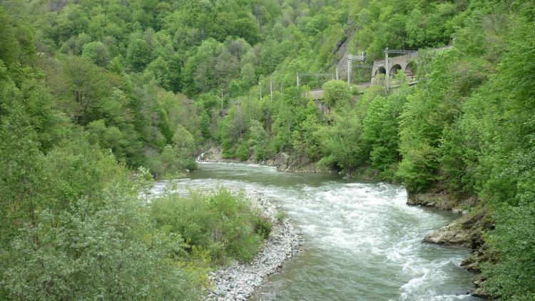 Fluss Jiu in der Jiu Schlucht © Calin Dejeu