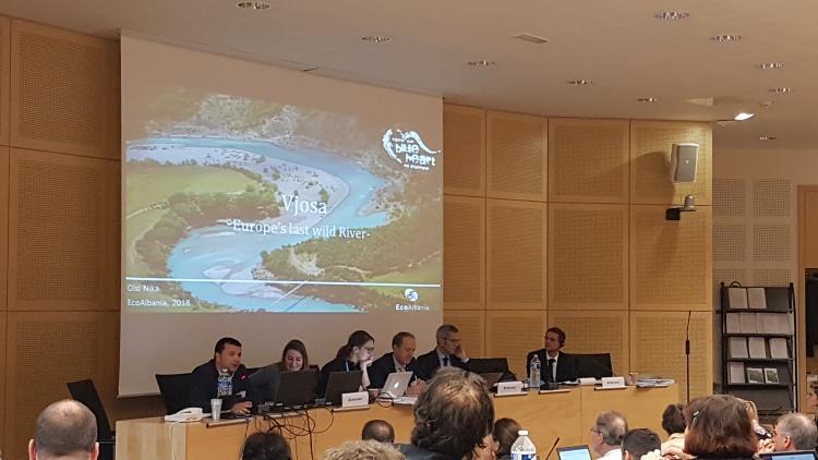 """Olsi Nika von EcoAlbania (ganz links im Bild) präsentiert den """"Fall Vjosa"""" vor dem Ständigen Ausschuss der Berner Konvention. (c) Theresa Schiller/EuroNatur"""
