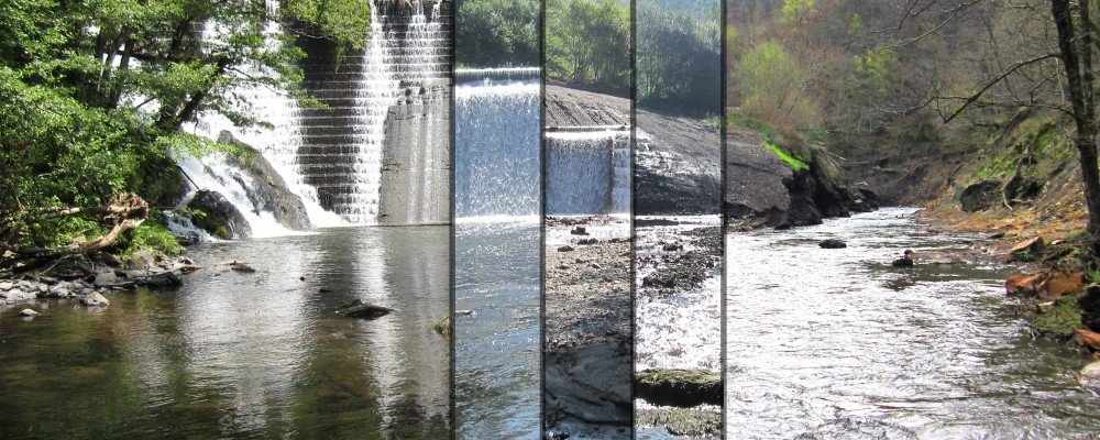 Step by step removal of Intura dam (2013-2016), after removal fish community recovered and spawning grounds are accessible again, Transboundary project Spain-France-Andorra, co-financed by EU - FEDER (photo credits) Basque Water Agency