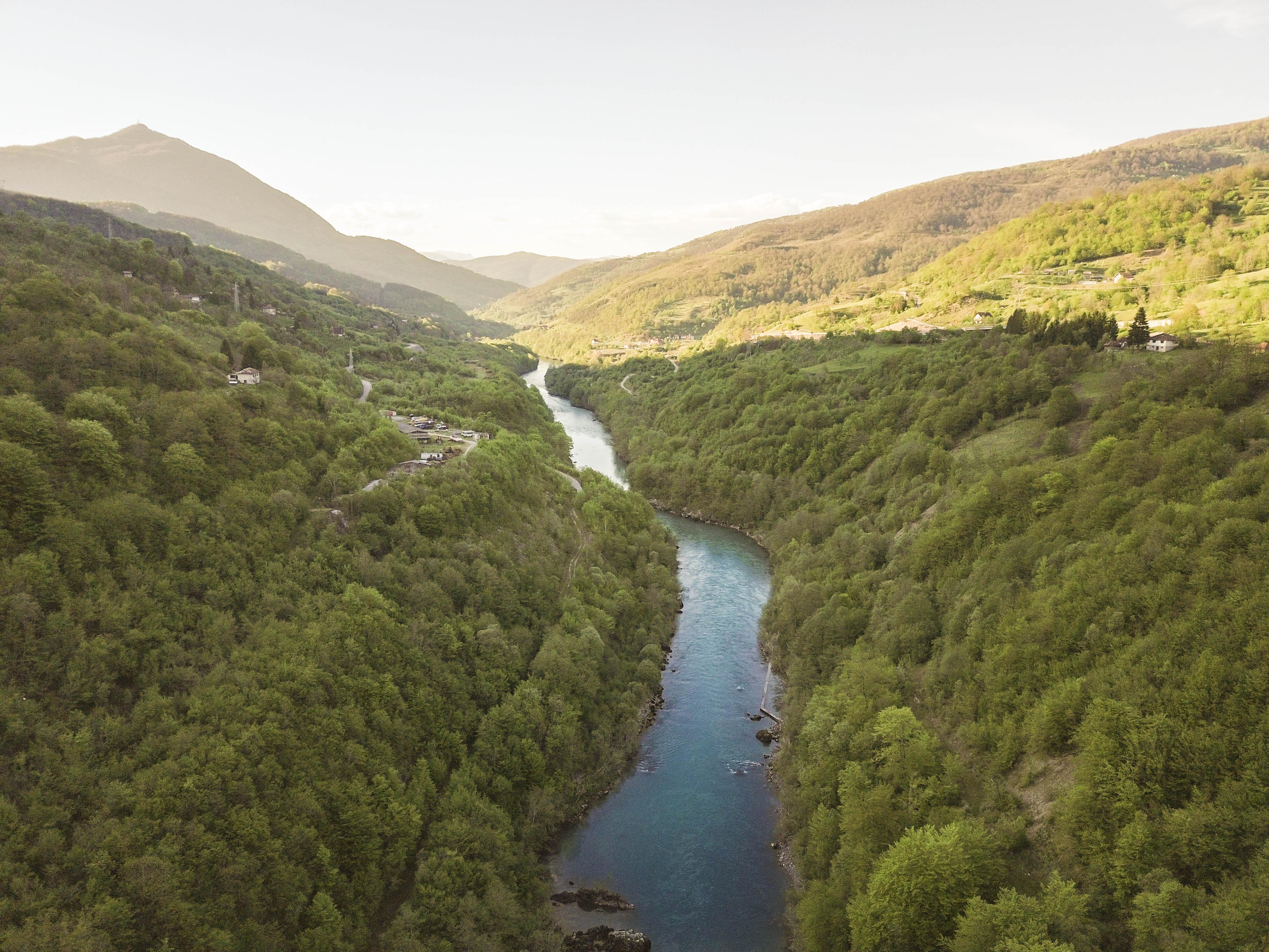 Die Drina ist die wichtigste Lebensader für die vom Aussterben bedrohten Huchen (Hucho hucho). Die Art ist besonders anfällig für Staudammbau © Matic Oblak