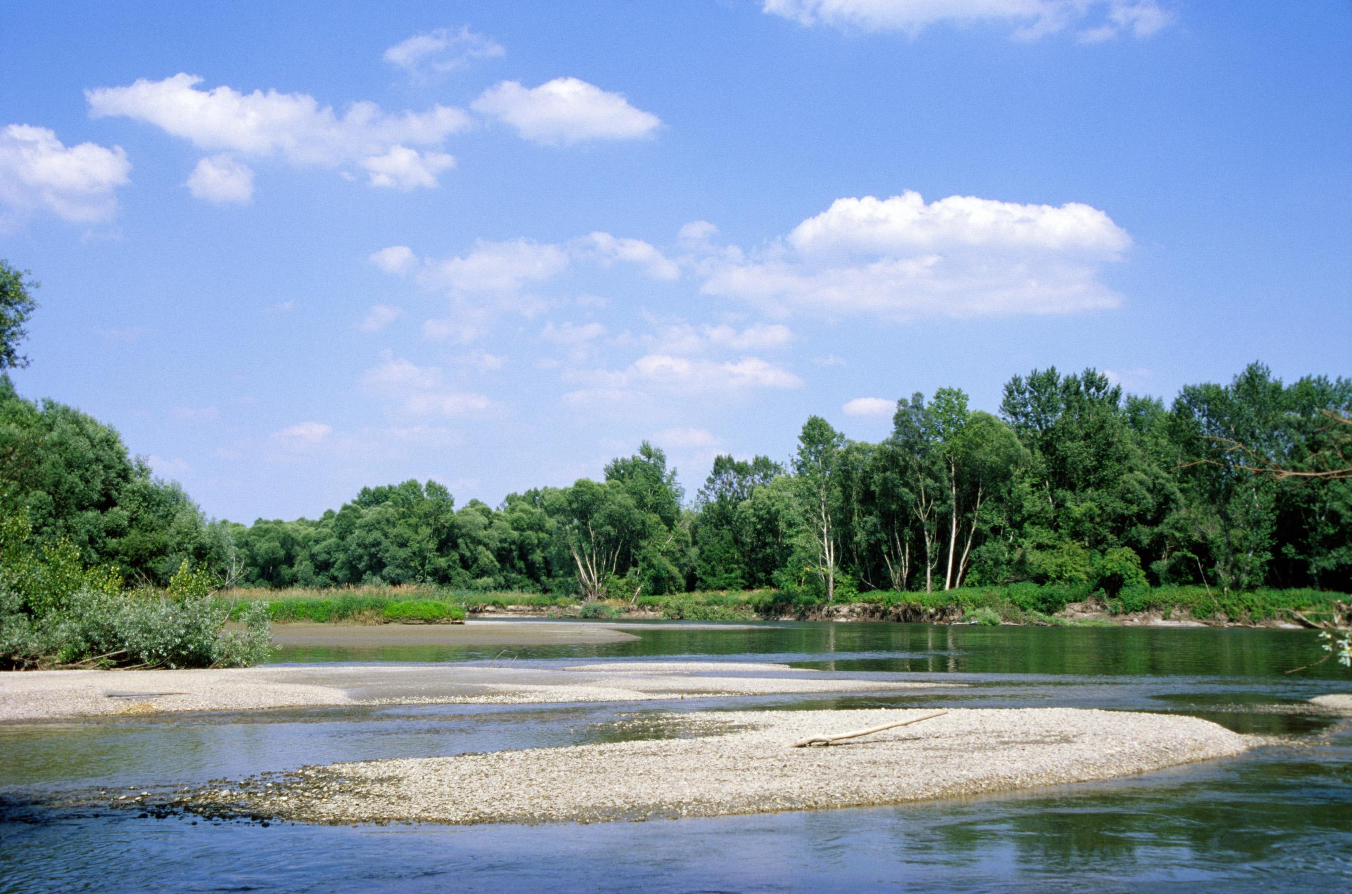 Natürliche Flusslandschaft an der Mur © A. Mohl / WWF