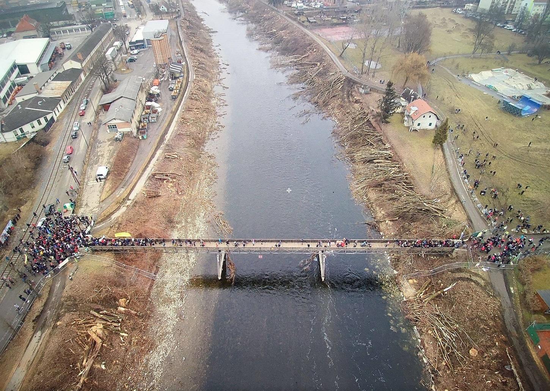 So sieht es nach dem Baummassaker an den Ufern der Mur in Graz aus. © Rettet die Mur